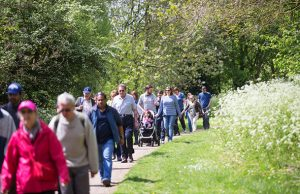Series of walks planned for 2017 in Milton Keynes