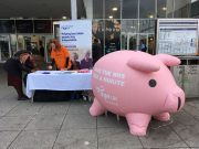 'Penny' the piggy bank in Milton Keynes